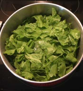 Blanching Swiss Chard