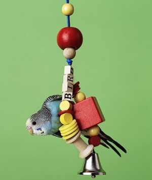 DIY Bird Swing
