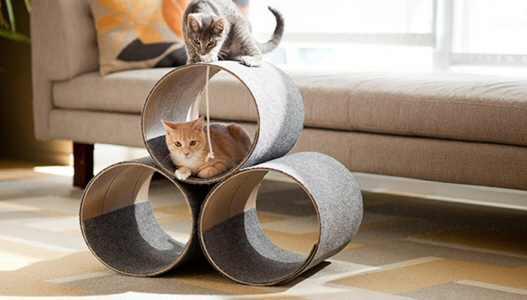 DIY Cat House Toy