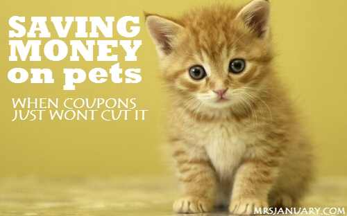 Saving Money on Pets