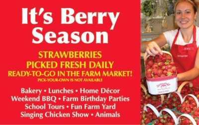Strawberry Event