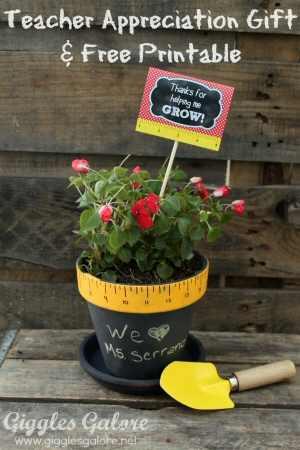 Teacher Plant Gift