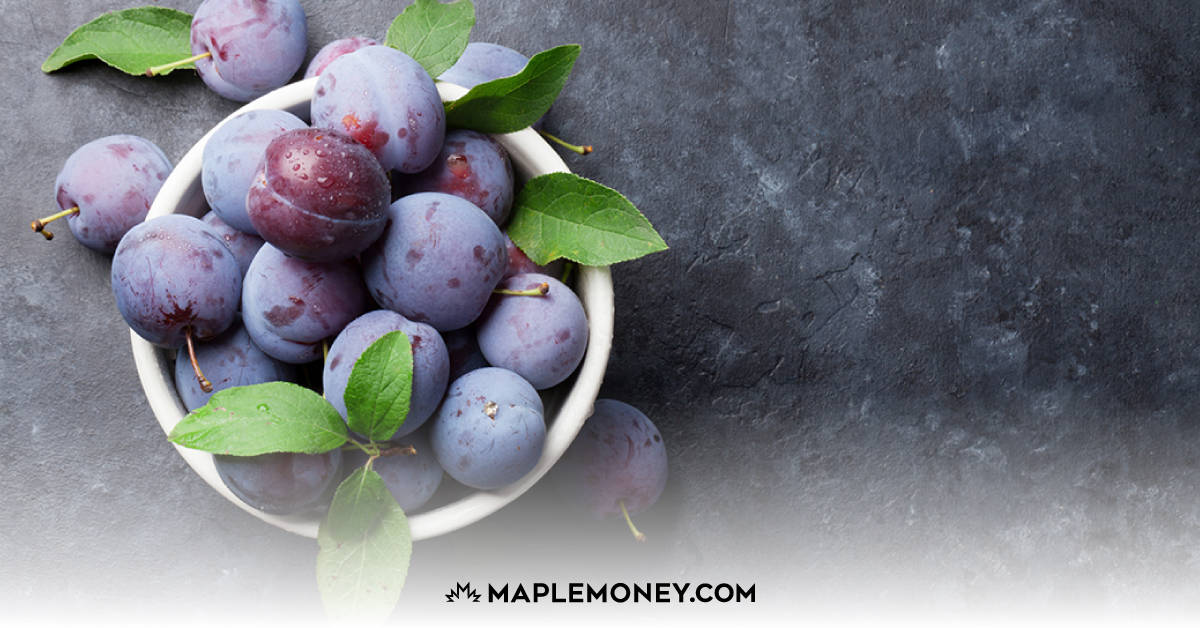 Everything You Need to Know About Indigo Plum and Plum PLUS Rewards