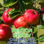 One of the newest players, Newton is a Canadian-only cryptocurrency exchange. How does this newcomer stack up to Canada's most popular crypto exchanges?
