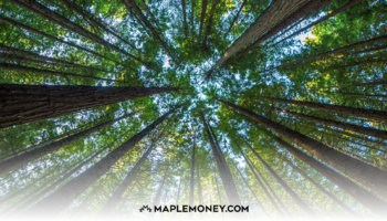 What Is Socially Responsible Investing and How Does it Work?